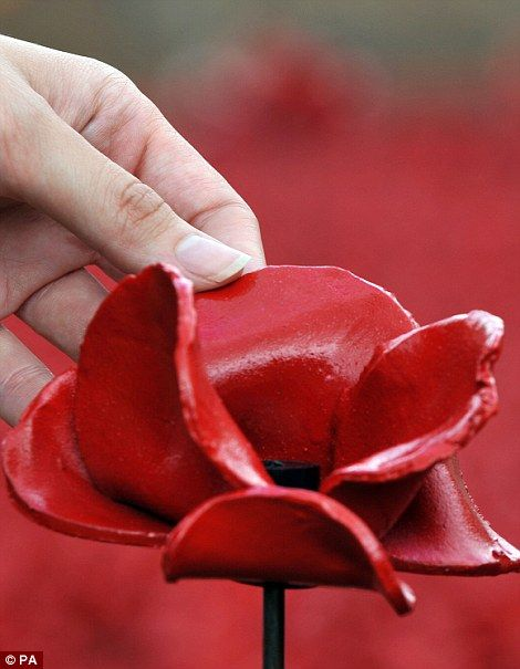 A volunteer holds a ceramic poppy