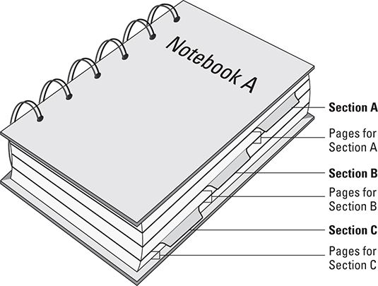 The Anatomy of a Notebook in OneNote 2013 - dummies
