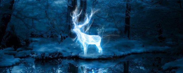 Image result for harry potter espectro patronus