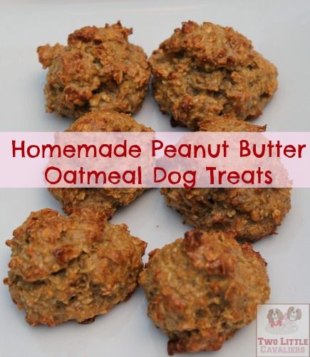 Homemade Peanut Butter Oatmeal Dog Treats 1/2 c. Oatmeal 1T. Peanut butter 1/2T. Water 1 large egg 1/8 t. Cinnamon 1/2 t. Honey Preheat oven to 350 degrees  Mix all ingredients together making sure well blended.   Drop by spoonfuls or rounded balls onto greased baking sheets. Bake 20 min.  Makes 6-9