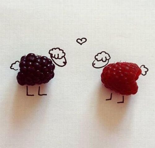blueberry or raspberry lamb?: Idea, Food, Art, Funny, Random, Things, Smile, Berry Sheep, Berries