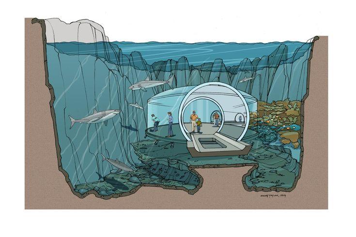 Shark Tank-Final Color.jpg