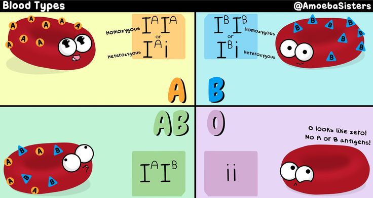 25  best ideas about blood type chart on pinterest
