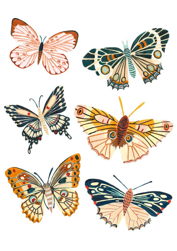 The Design- A playful Woodland design featuring all the best butterfly and Mot