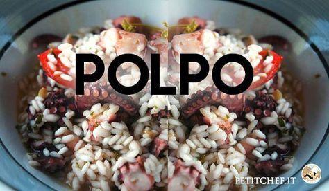 Cucinare il polpo: le migliori ricette per portarlo in tavola