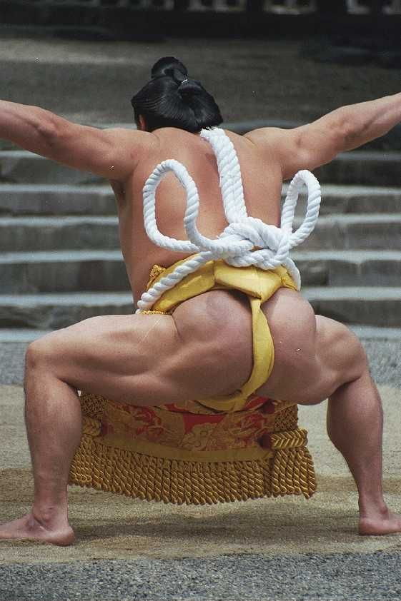 Fantastic shot. For the sumo wrestlers' inside story, see: http://www.amazon.com/dp/B006C1I5K8