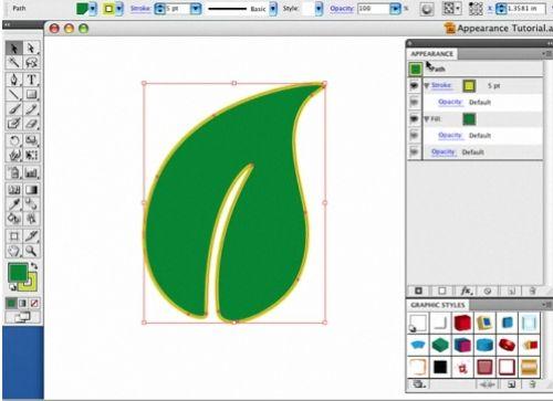 Learn Adobe Illustrator: All the Basics for Beginners