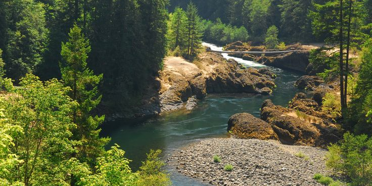 Just over 43 miles from Portland up Oregon Highway 224, the Clackamas River has carved and squeezed its way through an ancient basalt lava flow. The Narrows is a unique spot where the river becomes pinched by this now eroding igneous rock, and the current subsequently slows as the riverbed deepens. The Narrows is an amazing retreat on a hot mid-summer day.