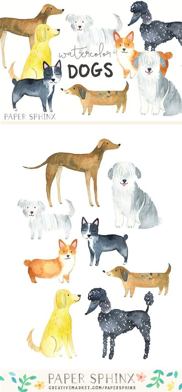 Watercolor Dog Breeds Graphic Pack  -  8 cute dog breeds, hand-painted in watercolors. Breeds included are: Greyhound, Golden Retriever, Boston Terrier, Dachsund, Sheepdog, Corgi, Poodle and fluffy Maltese. The graphics are hi-res and perfect for both digital and print use.  Use these elements for digital scrapbooking, product illustrations, event invitations, wall art, greeting cards, gift tags, party supplies, web sites, labels and more! @creativework247