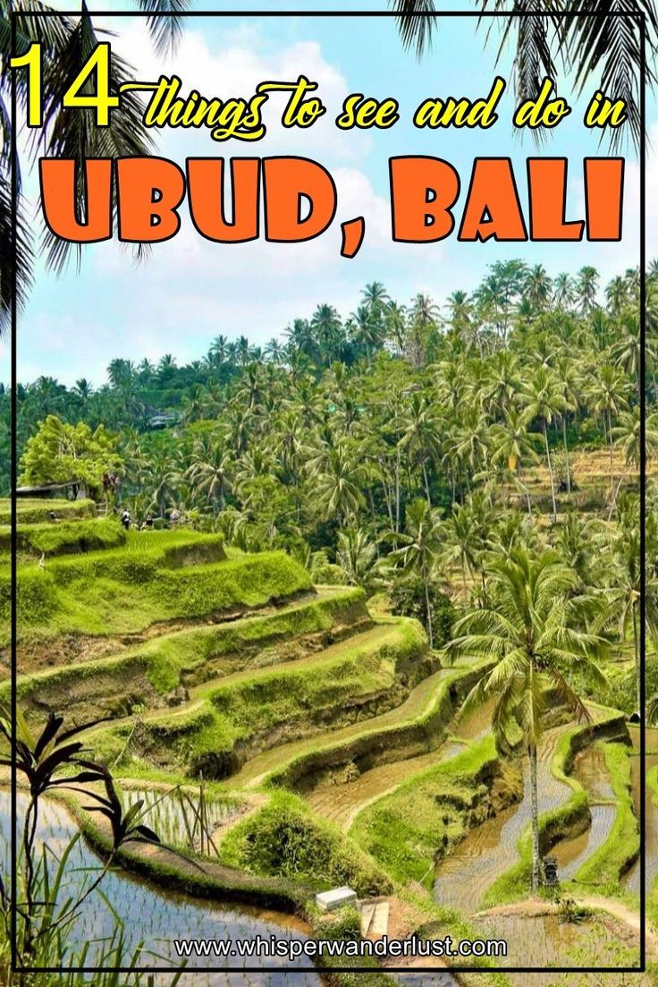 14 things to see and do in Ubud, Bali | indonesia | ubud | bali | tegallalang | what to see in ubud | what to do in ubud| things to see in ubud | things to do in ubud | monkey forest | tengenungan waterfall | eat pray love | bali island | ubud bali