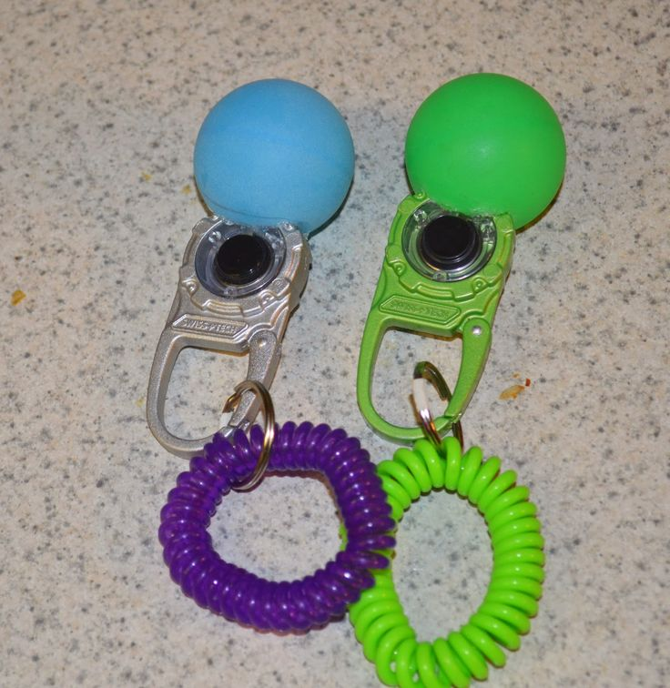 Hear no evil:  the deaf dog's blog: Clicker training the deaf puppy. fabulous and simple idea!