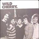 """Play That Funky Music""- Thank you Wild Cherry. The one place it is always appropriate to say ""white boy."""