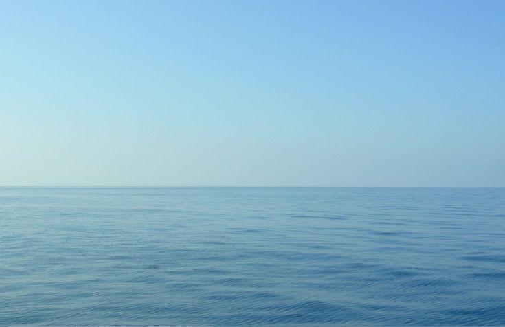 Intotheblue.it è una comunità che raccoglie video, foto, documenti di fondali tipici del Mar Mediterraneo, per far conoscere la loro bellezza, per far conoscere i vari organismi e le varie specie, documentando le varie criticità allo scopo di sensibilizzare le persone al rispetto e alla salvaguardia del mare. Puoi diventare autore di Intotheblue.it semplicemente scrivendoci... Read more »