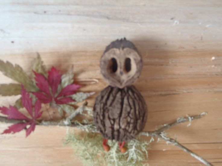 Black walnut shell owl made from 100% natural items.
