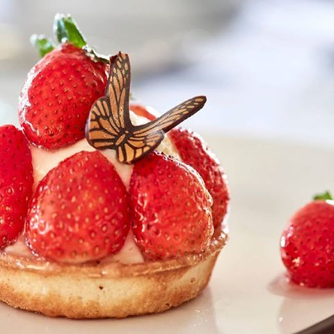 Spring has also arrived on our desserts! 🍓🦋 #grecianbay #cyprus #ayianapa #strawberry #butterfly #springtime