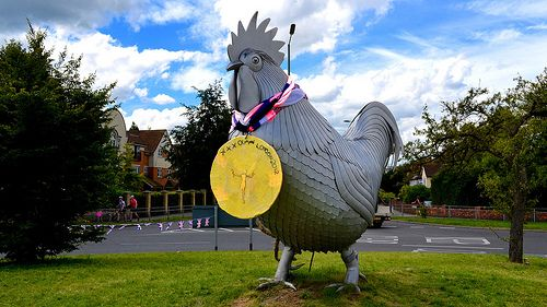 dorking cockerel - Google Search