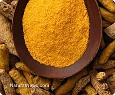 Before purchasing turmeric powder or extracted curcumin capsules, it's important to know a couple of tricks for getting the most beneficial absorption for turmeric's curcumin. http://www.naturalnews.com/041608_turmeric_spice_curcumin.html