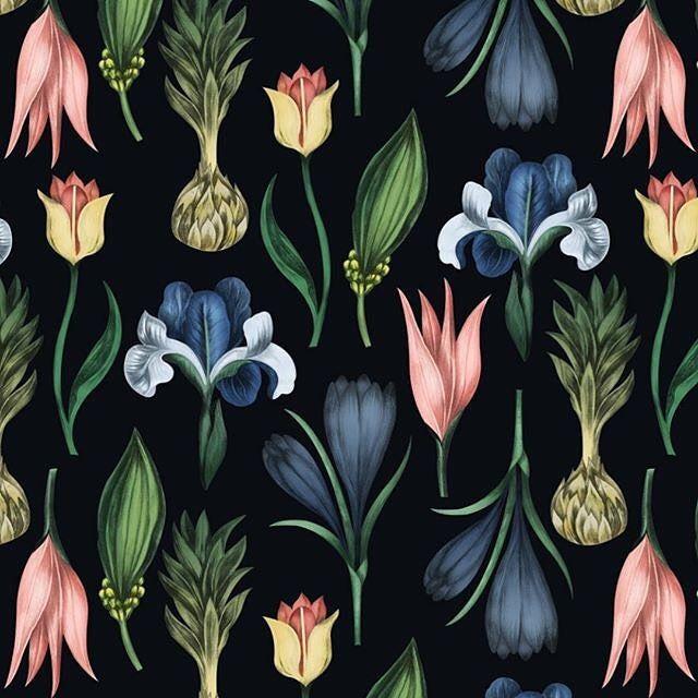 Katya Rozz - freelance illustrator and surface pattern designer