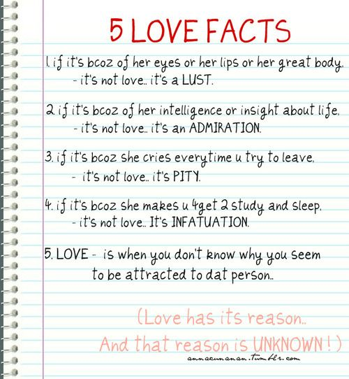 love+facts+about+guys | admire, facts, love, lust, true, typography