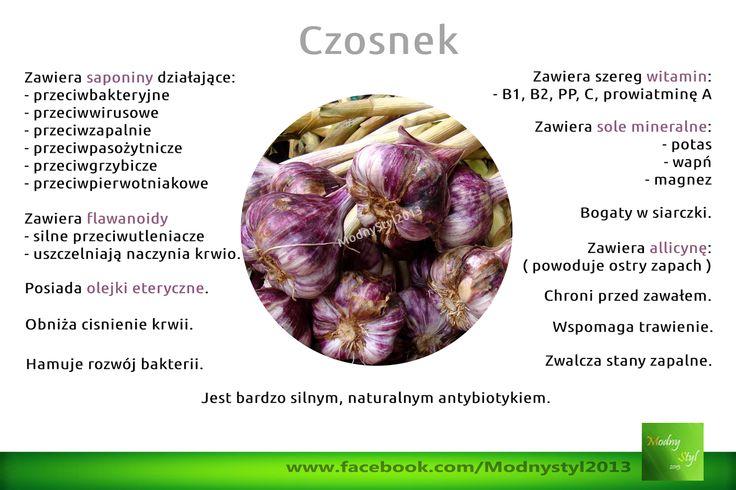ZdrowoNaturalnie.pl: Czosnek
