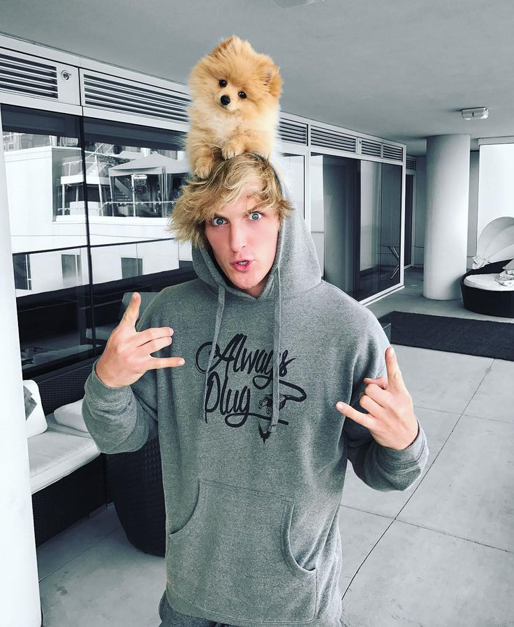"703.6k Likes, 3,272 Comments - Logan Paul (@loganpaul) on Instagram: ""Always Plug. Best life advice ever  Examples: Follow my puppy hat @KongDaSavage  My song ""Help Me…"""