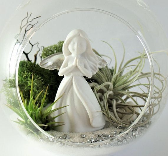 Air plant terrarium kit  round clear glass hanging by AlvinaDecco