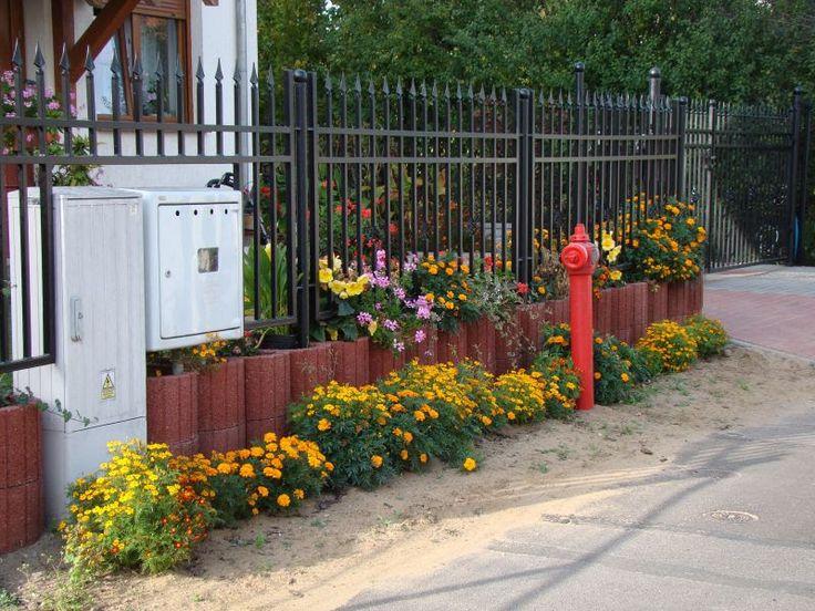 Pomysł na dekorację otaczającej nas przestrzeni - wiosenne kwiaty doniczkowe i rabatowe. #hydrobox #hydroboxpl #kwiaty #flowers #spring #summer #wiosna #lato #kwiatydoniczkowe #kwiatyrabatowe #flowers #flowerpot #doniczki #donice #ideas #diy #handmade #greencity #nature