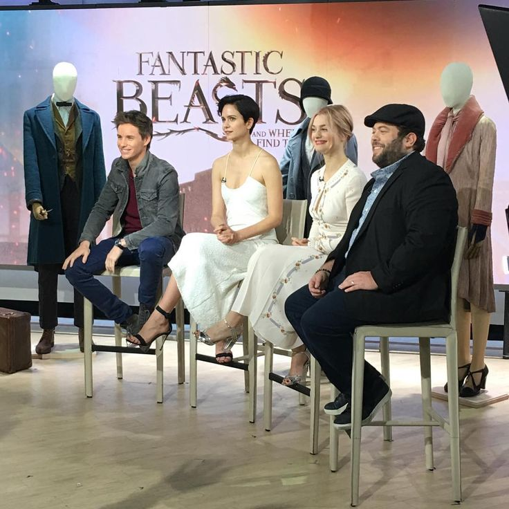 "Eddie Redmayne, Katherine Waterston, Alison Sudol, and Dan Fogler star together in the upcoming  movie ""Fantastic Beasts and Where to..."