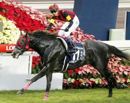 【香港カップ】日本馬がワンツー エイシンヒカリが優勝、2着にはヌーヴォレコルト