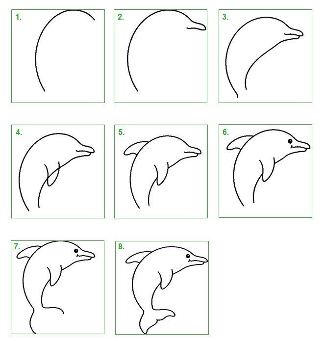 Schoolwiz - Hoe teken je een dolfijn