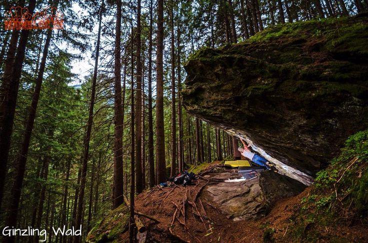 Have i nice weekend! GoOut! ..... #zillertal #österreich #ginzling #ginzlingwald #bouldering #climbing #klettern #bouldern #bouldering_pictures_of_instagram #climbing_pictures_of_instagram #picoftheday #climb #nature #ilooovit #bergfreunde #austria #mainbloc