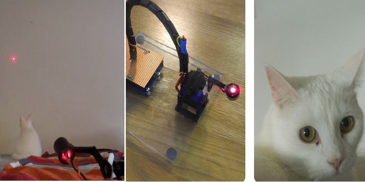 The Ultimate Cat Toy — 3D Printed Laser Robot For Your Cat http://3dprint.com/62487/3d-printed-cat-laser-toy/