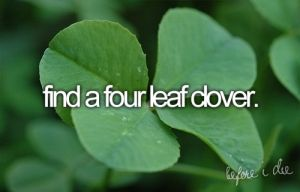 since I was a kid I've looked in almost every single clover patch I've encountered