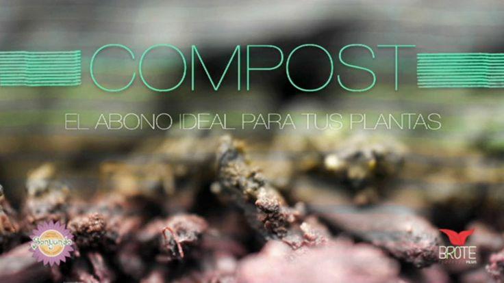 Ciclo Huerta Orgánica I - Compost