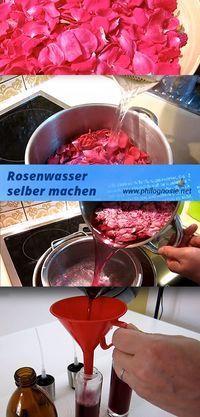Wenn Sie selbst Rosenwasser herstellen möchten, können Sie es als Toilettenwasser oder zum Kochen verwenden …   – diy
