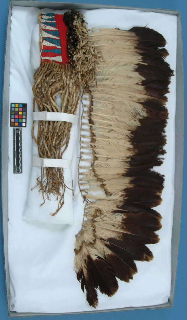 Comanche bonnet, probably before 1828.  From Berlandier.  NMNH  ac