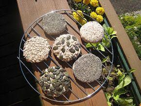 Turtite de hrisca si seminte de in