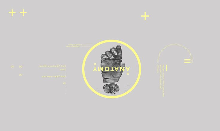 Anatomy + + on Behance