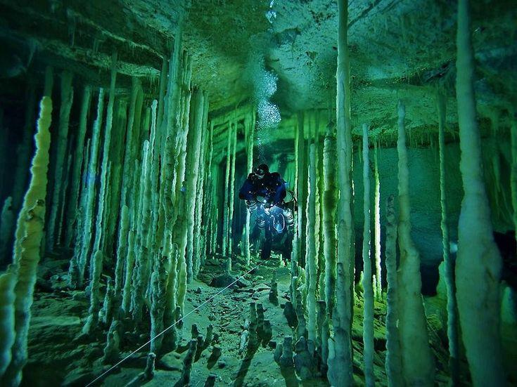 Cenote Diving In The Yucatan Peninsula | Washington Adventures - seattlepi.com