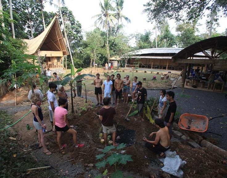 Join a our Bali Permaculture Design Course at the Green School for a unique and…
