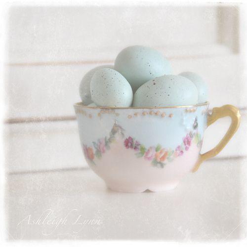 blue robin eggs in a vintage teacup