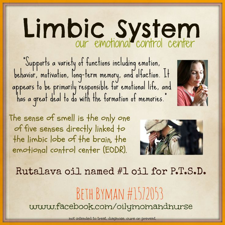 """Limbic System. our """"emotional control center"""" Young Living ... Limbic System Add"""
