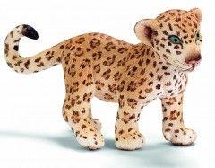 Детеныш леопарда 14399