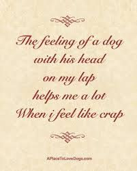 Best 25+ Dog poems ideas on Pinterest | Dog loss poem ...