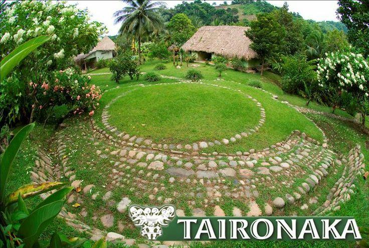 Taironaka - Tras la huella del indio