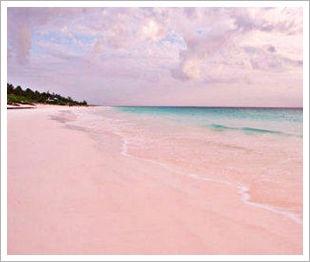 Worlds oddest beaches