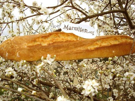 Baguette maison : Recette de Baguette maison - Marmiton