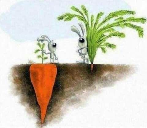 le apparenze del successo spesso ingannano