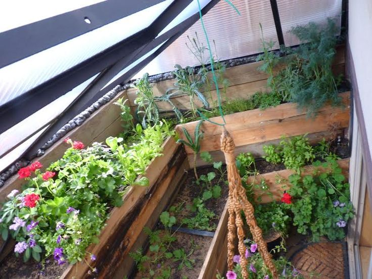 Greenhouse window well for the basement egress if only i for Better homes and gardens greenhouse