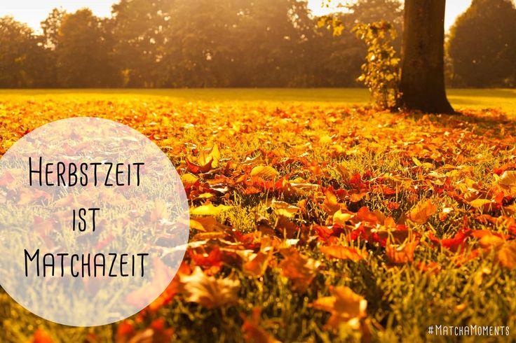 #MatchaMoments von Koumei Matcha, gefunden im Blog: http://www.koumei-matcha.de/blog/ #autumn #leaves #Herbst